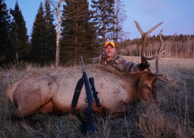 Bill H Elk 2017
