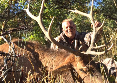 colorado-guided-elk-hunting