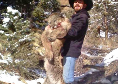 colorado-guided-mountain-lion-hunting