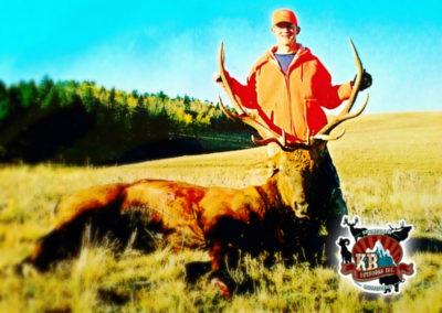 Drew Bull